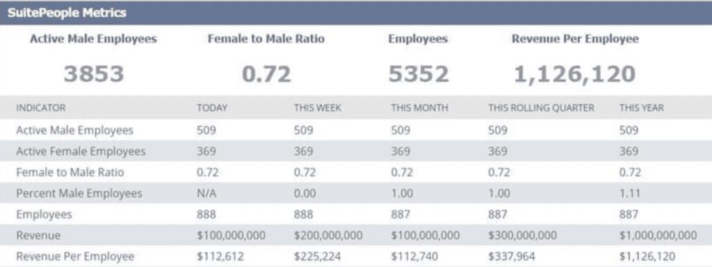 NetSuite ERP SuitePeople HR and Finance Metrics.